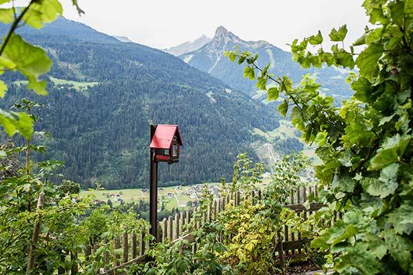 Mountain lodge Old Schoolhouse garden - Montafon - Schruns