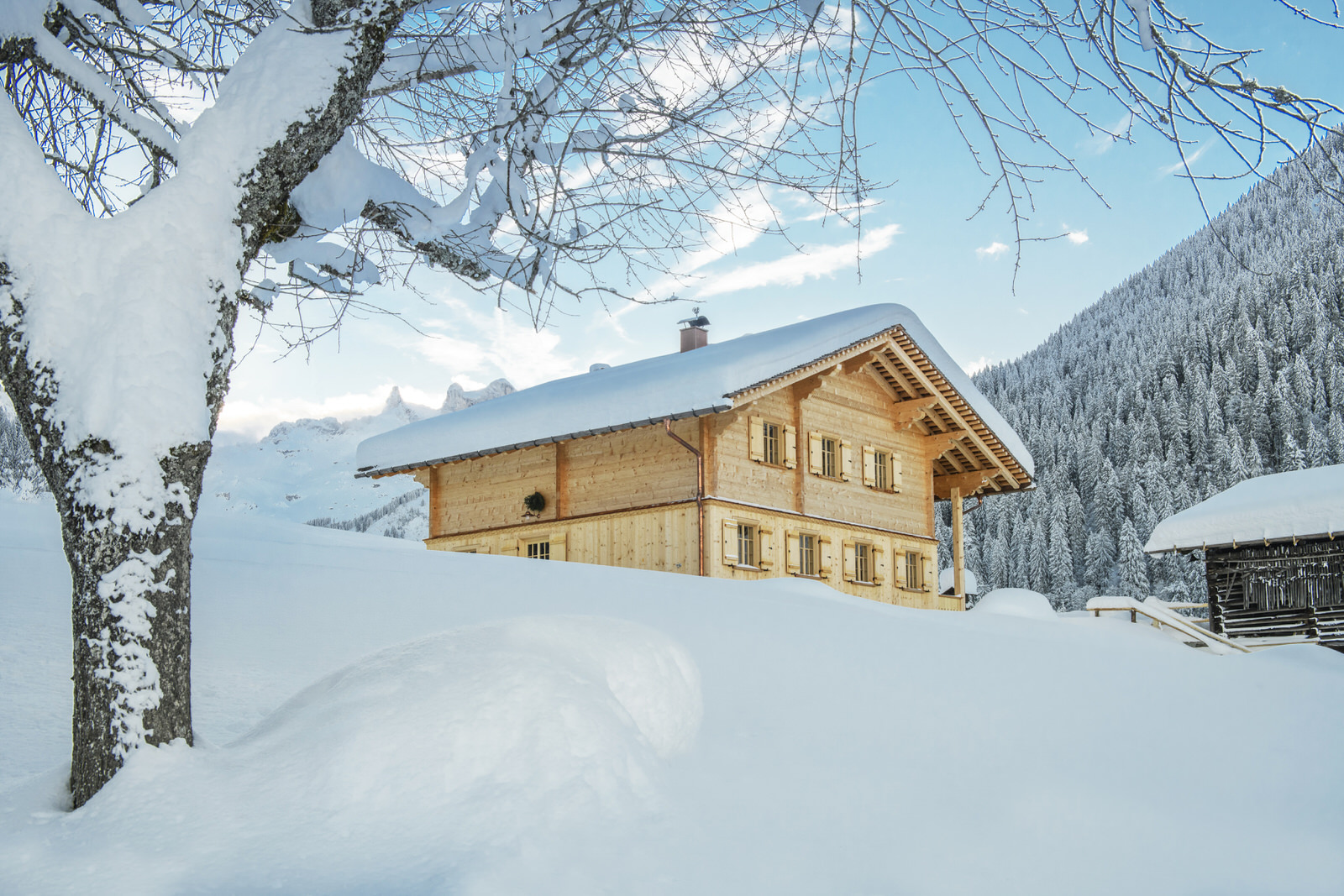 Exclusive mountain lodge Gauertal Montafon - winter view
