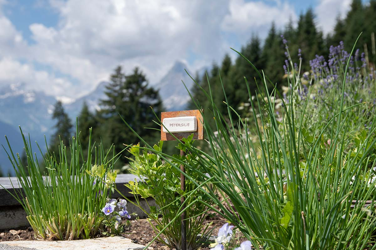 Mountain lodge Bartholomäberg in the Montafon - herb garden